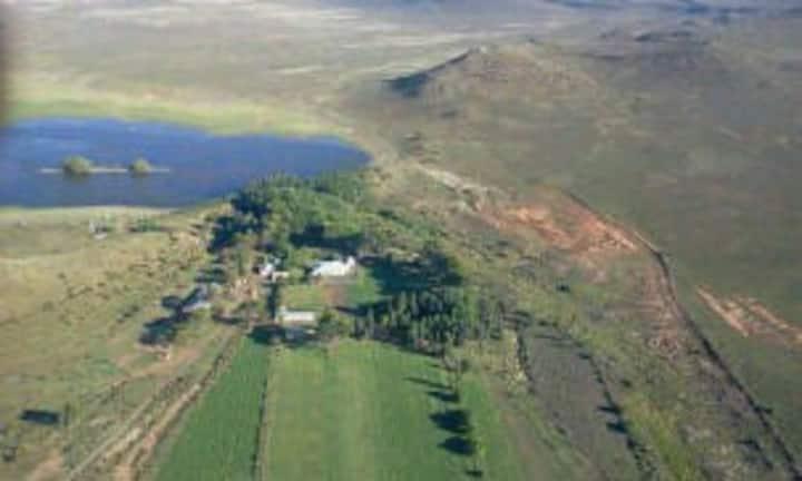 Grootfontein gastehuis