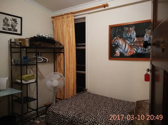 Corporate Accomodation - 6 - Tiger Room - Auchenflower - 旅舍