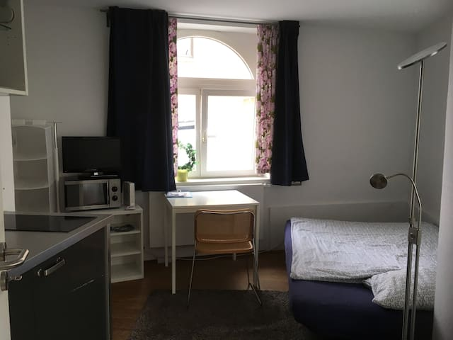 Full furnished small Flat near University of Bonn