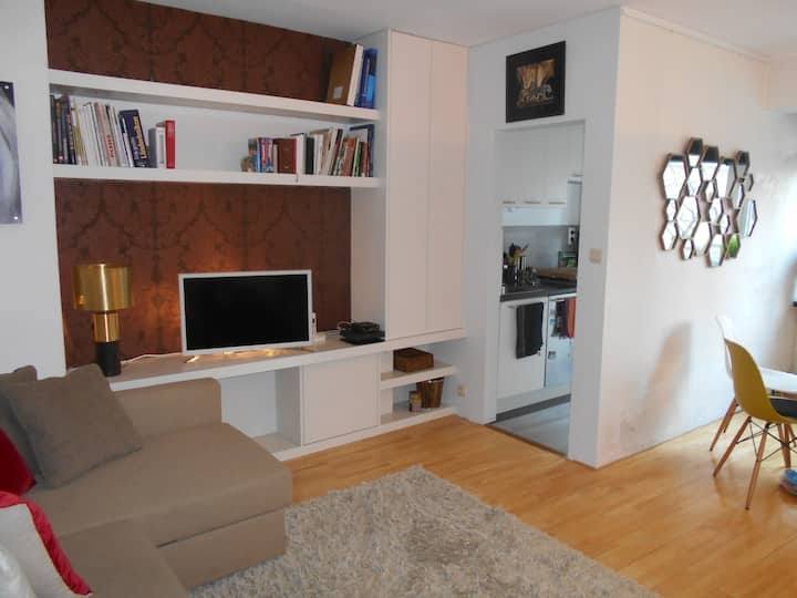 Charming and cosy fully furnished 1 bedroom apt