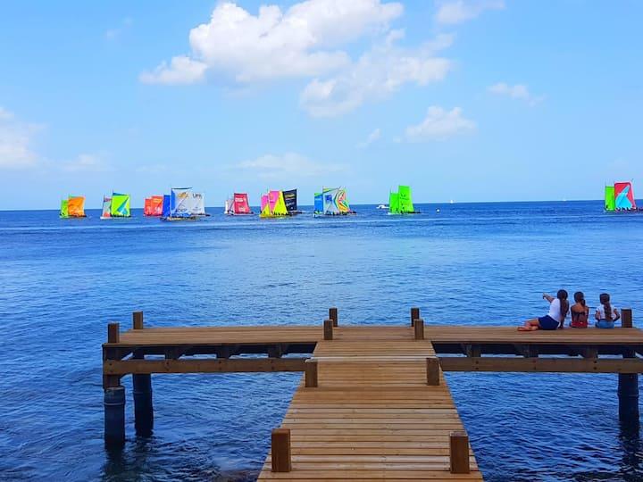 Appartement T2  accés direct à la Mer ponton privé