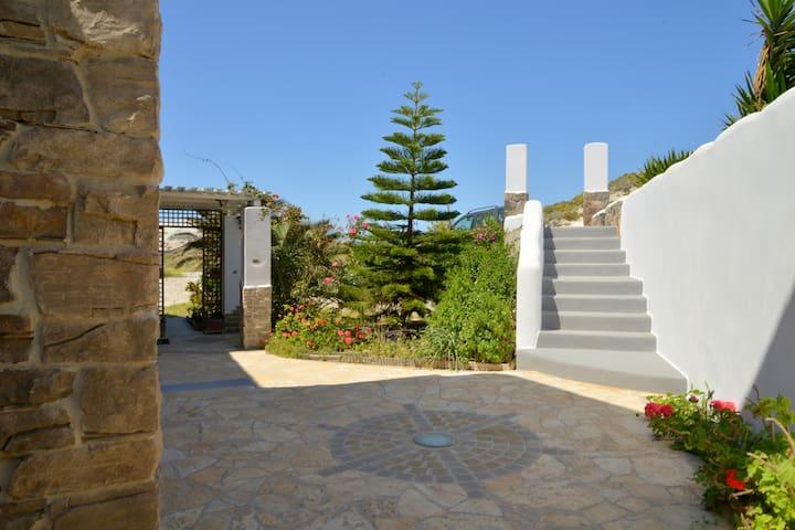 Garden - Surrounding Area