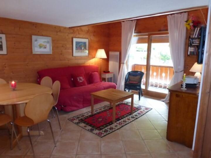 Nice 3  rooms apartment 6 persons in Meribel Village close to the slopes and shops