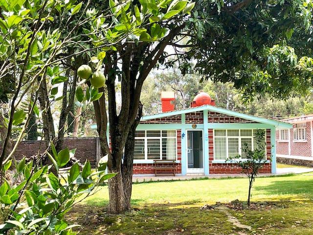 Casa completa con jardín