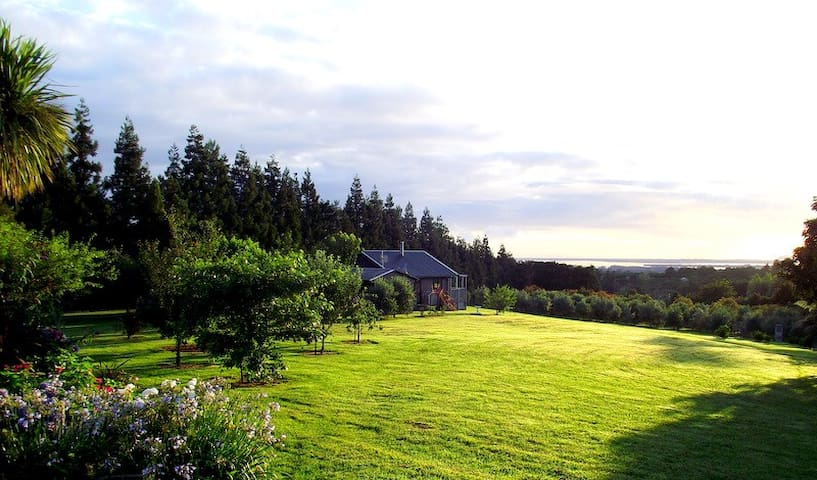 Havenlee Cottage - Katikati - Guesthouse
