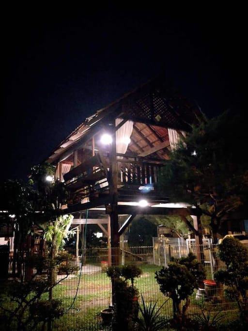 Night view of the Tree House
