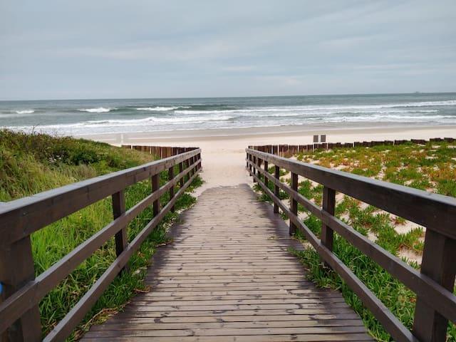 Apto Praia Brava Verde&Mar
