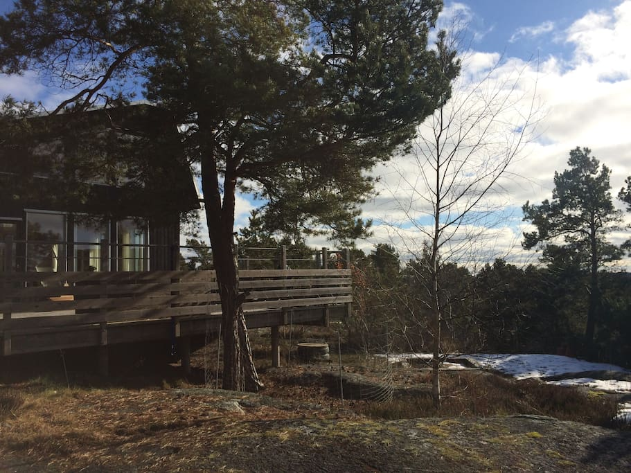 Utsikt över trädtopparna, sjön och farleden bortom trädtopparna