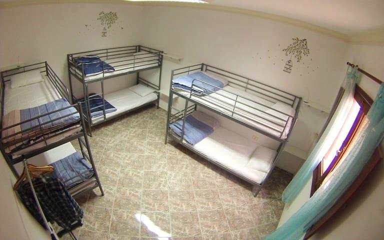 Canary Sun Hostel - Shared Mixed Room
