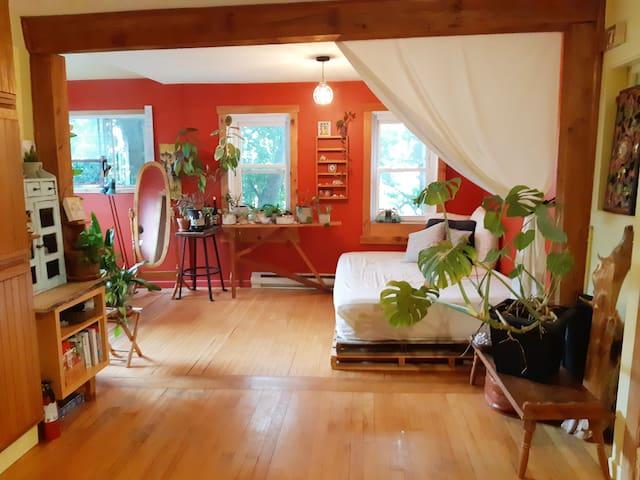 Salon et divan lit - Restroom - Queen size