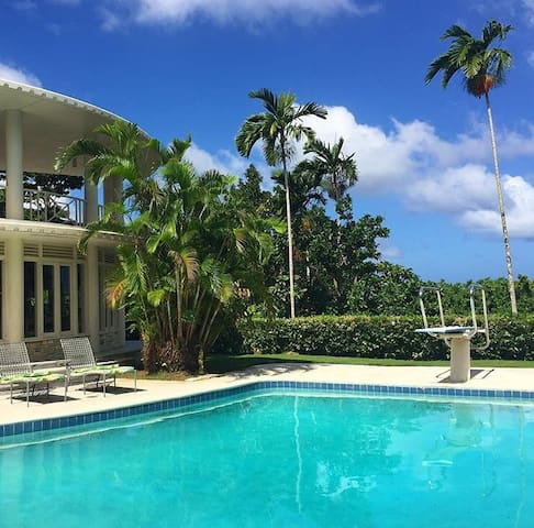 Exquisite Rainforest Estate - Port Antonio - Hus