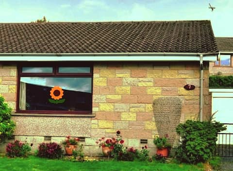 The House with Sunflowers in the Window