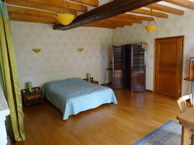 Grande chambre calme en campagne dans une longére. - Saint-Mathurin-sur-Loire - Dům