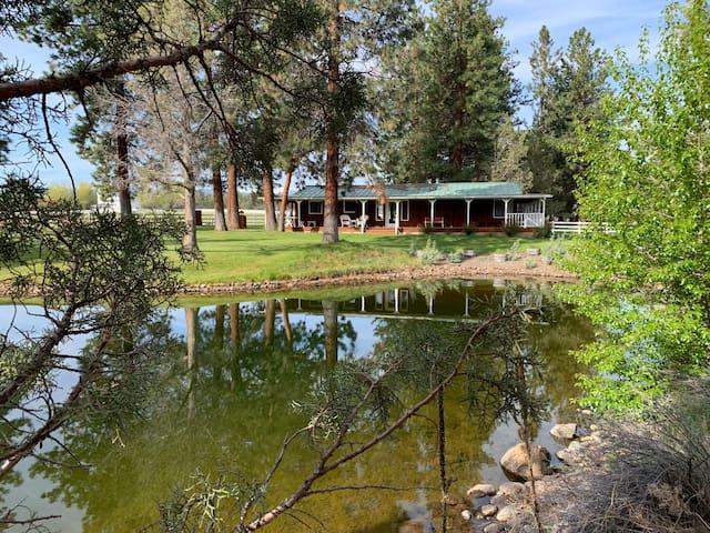 Sisters Cottage on Pond, hottub,1 dog only, bikes
