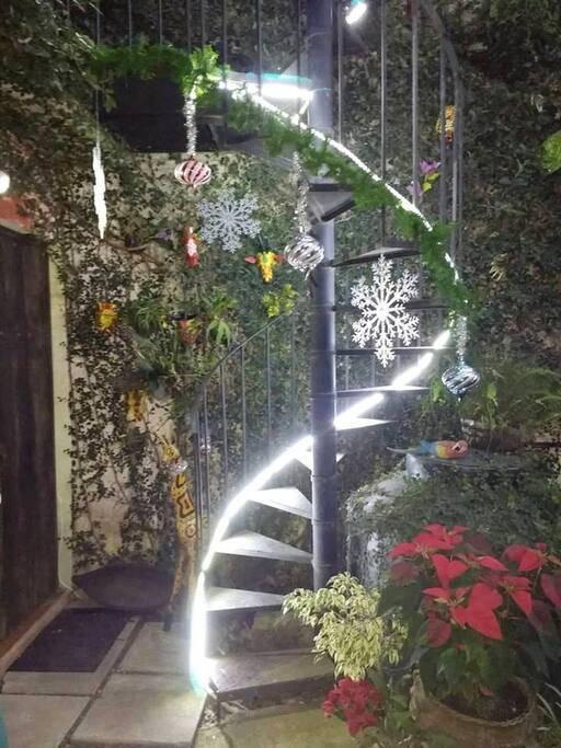 Ready for your Holiday and looking forward to lighting up your life with our spiral staircase to the stars