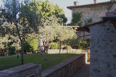 Immersi nel Chianti Classico - Castellina in Chianti