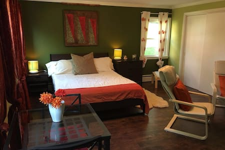 Large DC suite nr metro - private bathroom - House