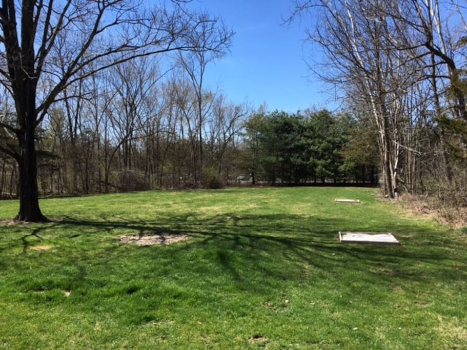 Backyard with horseshoe pits.