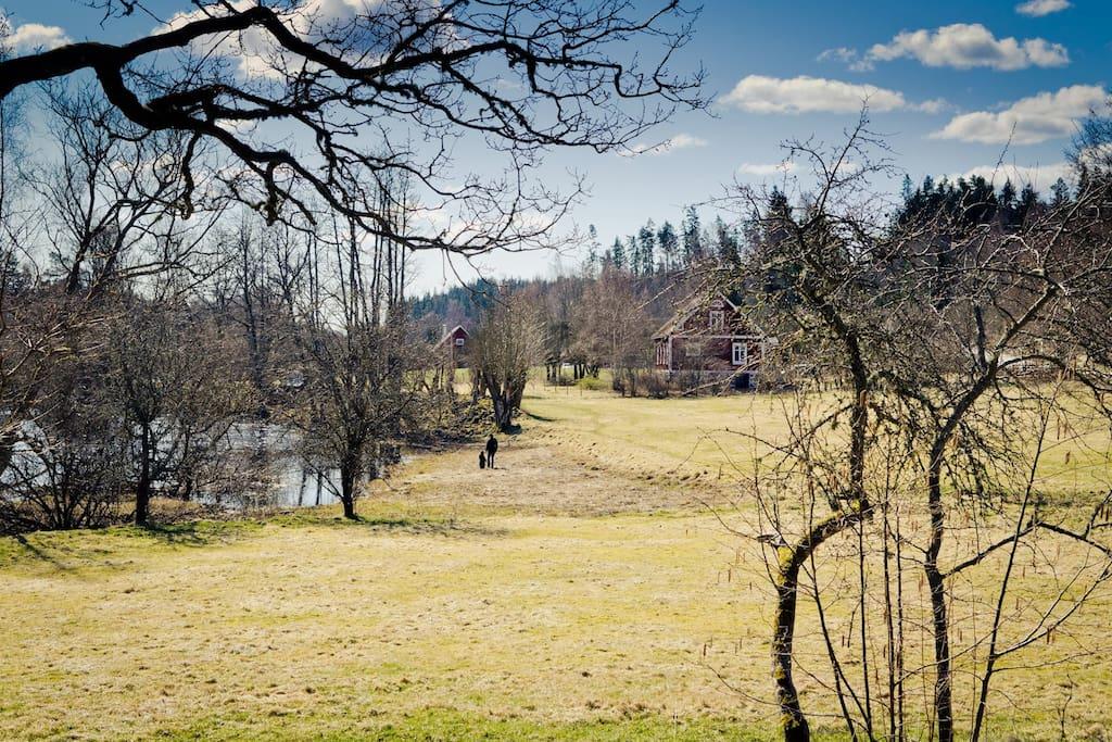 Hus set fra Engen mod nord
