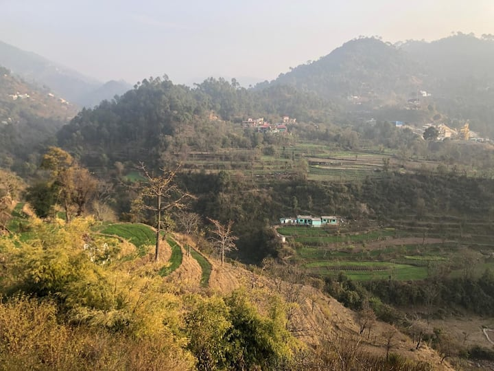 Hillside Retreat Homestay