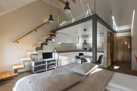 NEW & MODERN King Mindaugas apartment - Kaunas