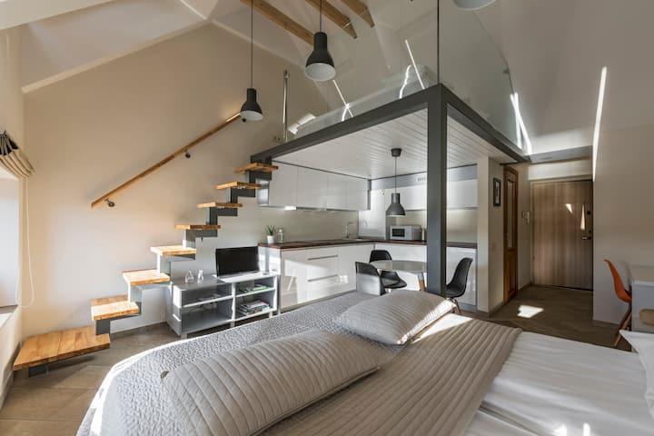 NEW & MODERN King Mindaugas apartment