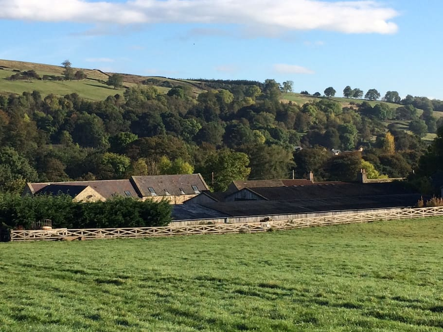 The view from our fields back over our small holding and cottage complex