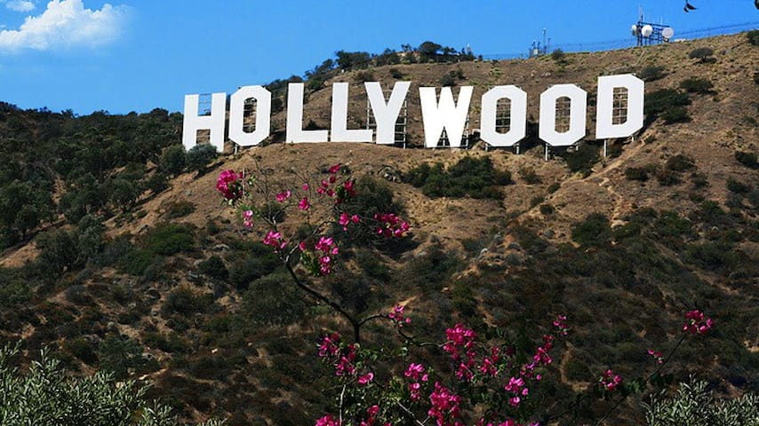 Cute studio monthly booking in LOS ANGELES