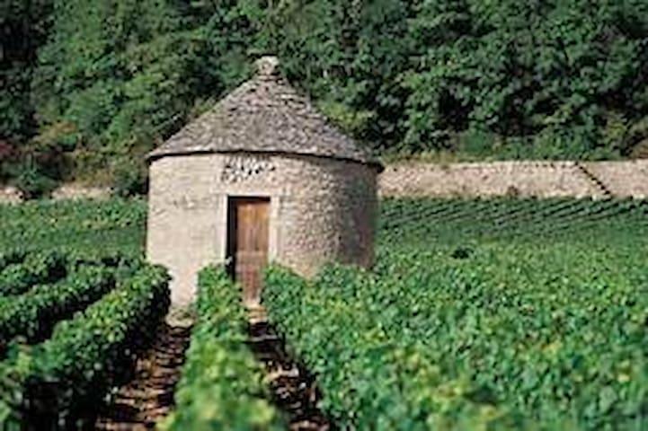 """Dans le paysage viticole, vous pourrez trouver une """"Cagole"""""""