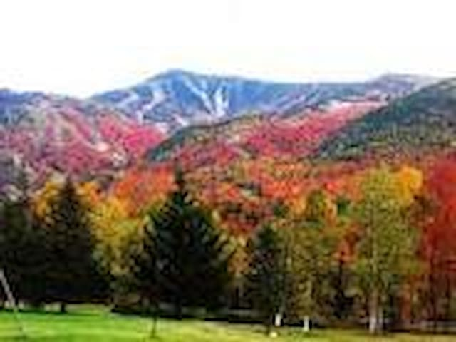 the fall colors in WNY are some of the best in the state. Sept-Oct