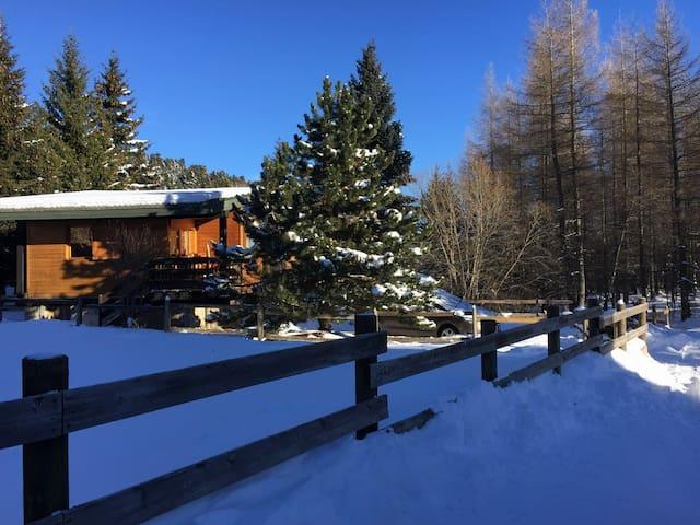 Joli chalet*** Pyrénées 2000 au pied des pistes - Bolquère - Chalet