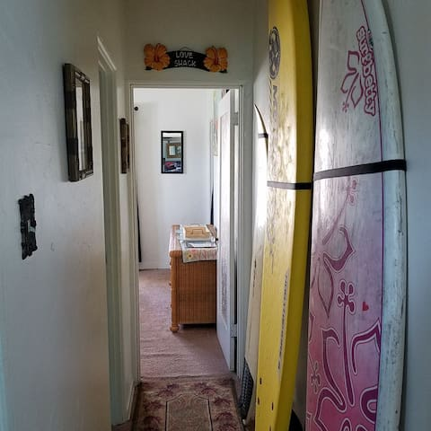Only the soft top surfboard and the bodyboards are available for use. Sorry, the fiberglass surfboards are only for display.