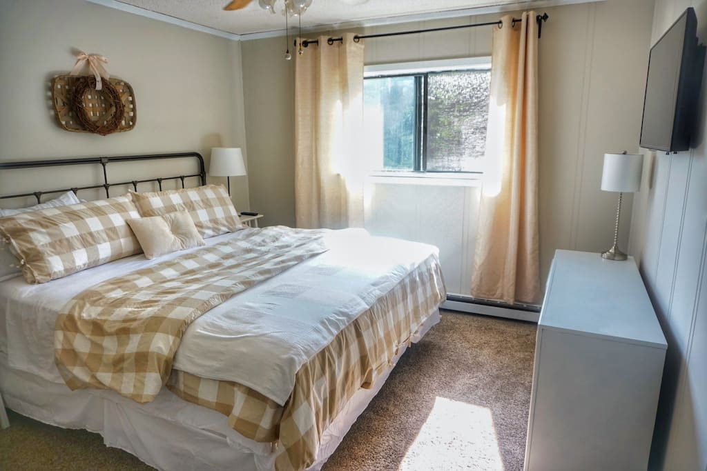 Master Bed with King Sized Mattress, Dresser, Closet, and Flat Screen Television