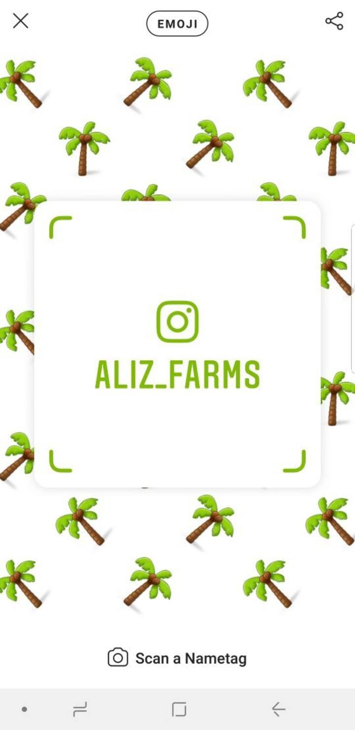 Aliz farm house