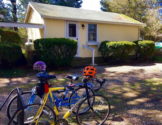 Daffodil Cottages #43