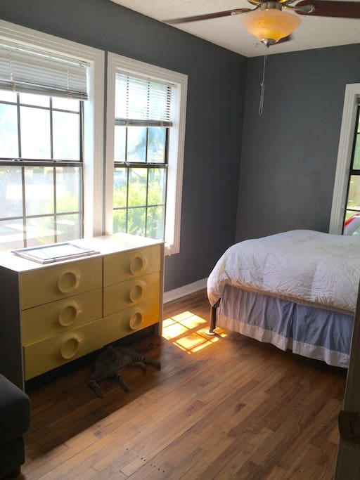 Spacious Bedroom In The Heart Of The Eastside Houses For Rent In Austin Texas United States