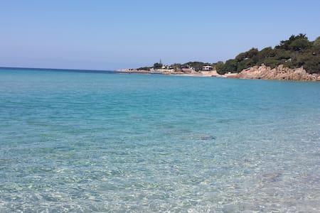 F3 de 70m2 face à la plage du Rupione, Pietrosella - Pietrosella - Квартира