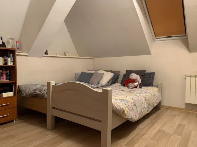 Cozy flat for friendly guests