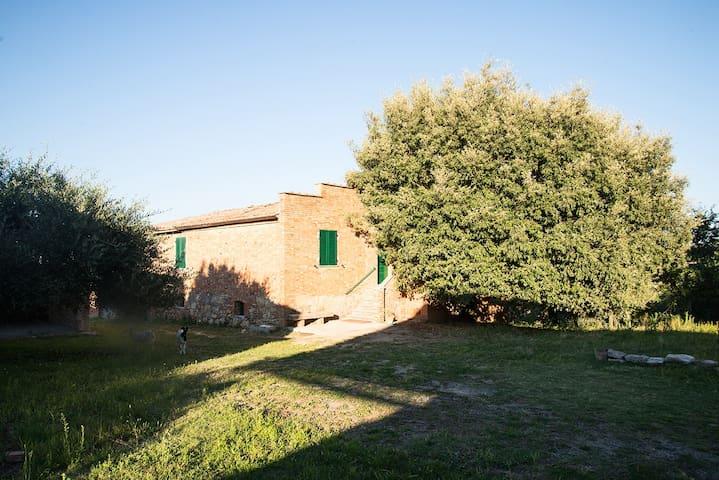 Rooms in farmhouse in the green with animals - Provincia di Siena - Rumah
