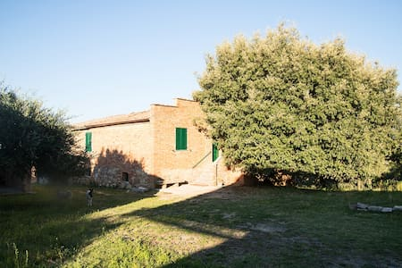 Rooms in farmhouse in the green with animals - Provincia di Siena