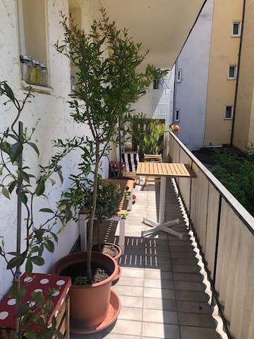 Cozy one-room apartment in central Munich