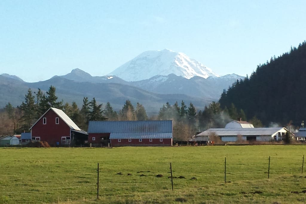 Beautiful view of Mt. Rainier and surrounding farms as you approach the property from Warner Rd.!