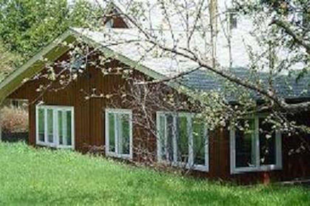 Farm cottage #1