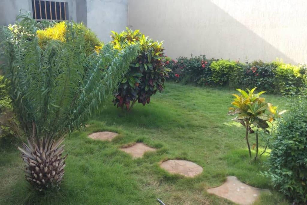 Jardin propre avec gazon et fleurs bien entretenu