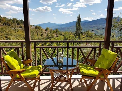 TheMountainView near Meteora-Metsovo-Ioannina-Trik