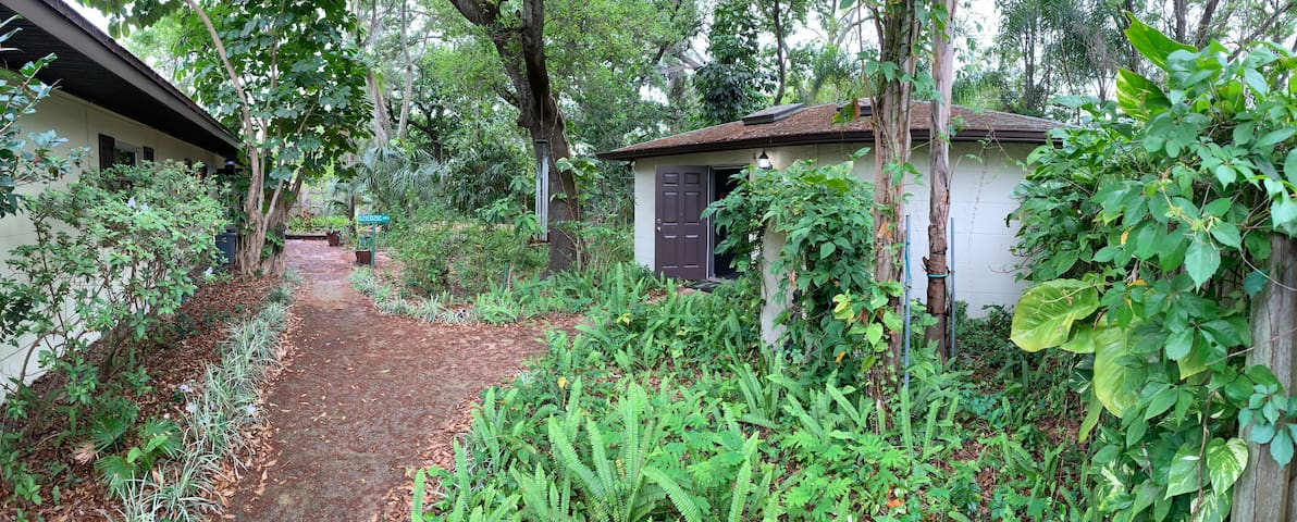 Tree Canopy Studio   St Pete   No Cleaning Fee
