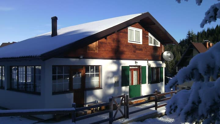 Chalet Pahulja - 2 apts. in 1 house