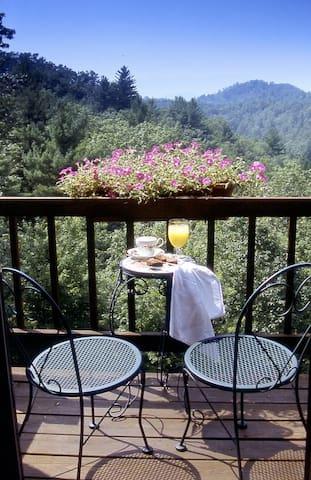 Lodge on Iron Mountain