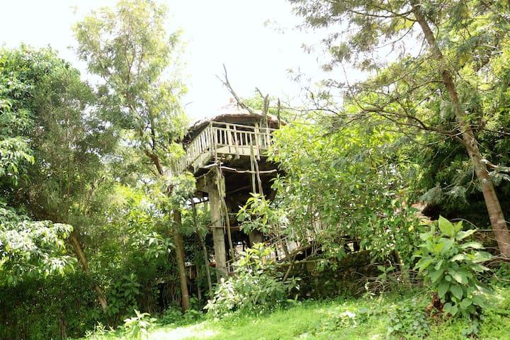 Kolol Riverside Resort