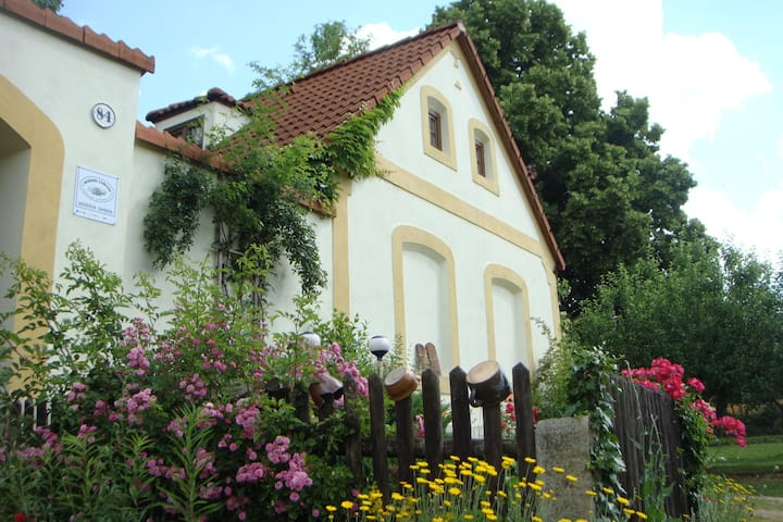 House for 4+1 pers - dog welcome in Plavsko R5063
